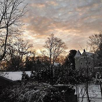 This Morning's View From The Backyard by Melissa Yosua-Davis