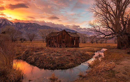 This Old House by Tassanee Angiolillo