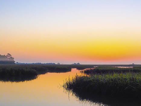 Thistle Estuary Sunrise Sunset by Jo Ann Tomaselli