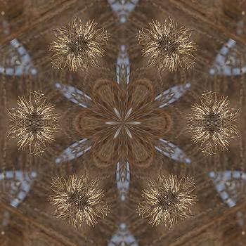 Valerie Kirkwood - Thistle Fluff Kaleidoscope
