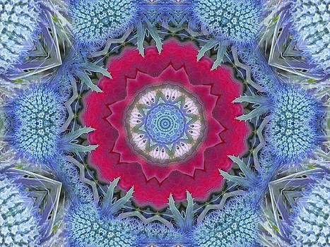 Thistle Portal Mandala by Diane Lynn Hix