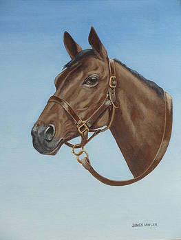 Thoroughbred by James Lawler