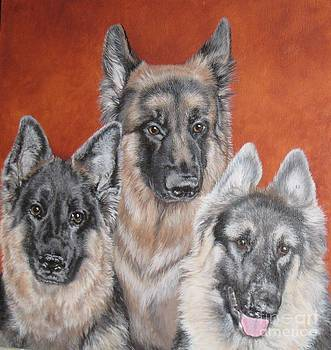 Three Amigos by Jill Jones