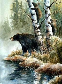 Three Bears by Robert Stump