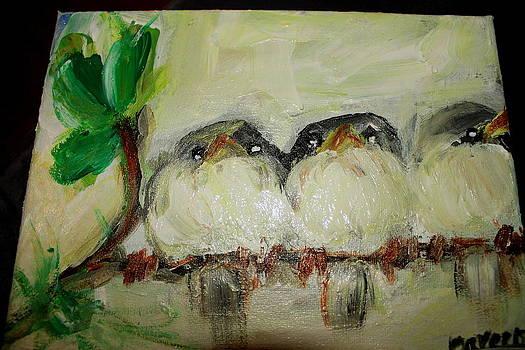 Three Birds by Dareen  Hasan