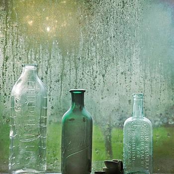 Three Bottles by Sally Banfill