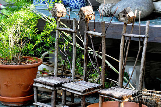 Three Chairs In The Garden by Tanya  Searcy