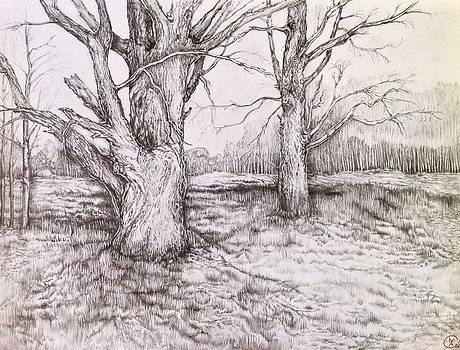 Three Days Before Winter by Iya Carson