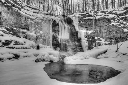 Three Falls Woods by Chris Babcock