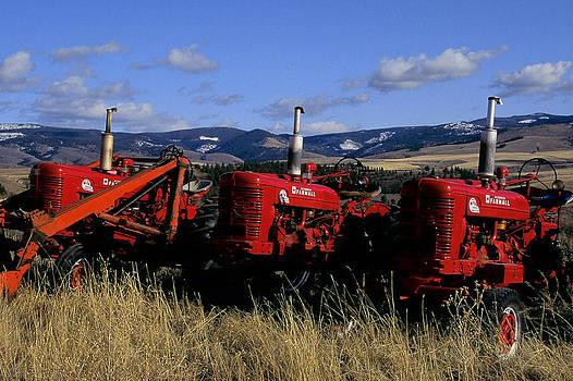 Three Farmalls by Jim Cotton