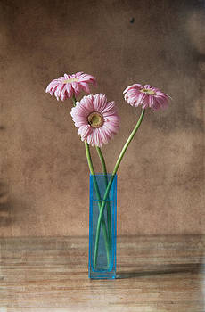 Three flowers by David Heger