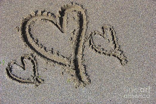 Three Hearts by Andrew Dobrzanski