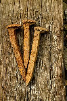 Three Nails by Mark Van Scyoc
