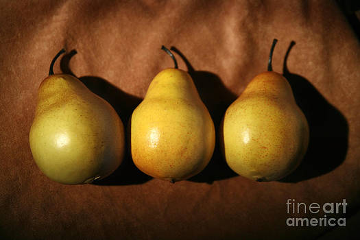 Three Pears by Sharon Dominick