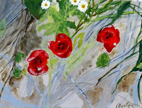 Three poppies on the sand by Olga R
