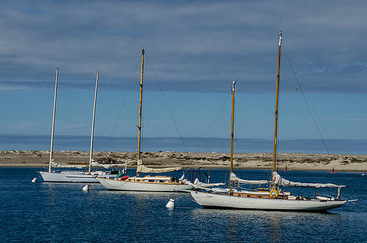 Three Times to Sail by Joie Cameron-Brown