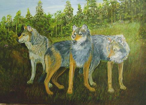 Three Wolves by Ruth Seal