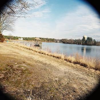 Through the Lense by Gina Patton