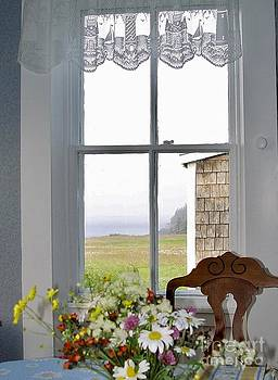Through the Window by Christopher Mace