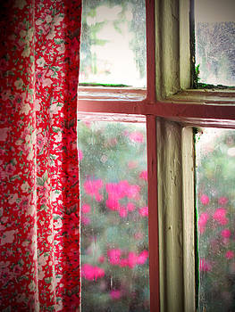 Through the Window by Lisa Chorny