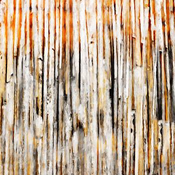 Ricki Mountain - Through the Wood