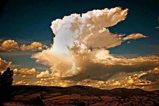 Marty Koch - Thunderhead Over The Blacktail Plateau
