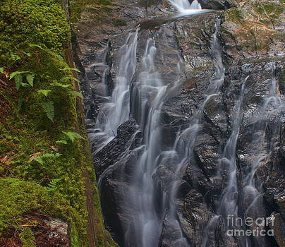 Amazing Jules - Thundering Brook Falls with Ferns