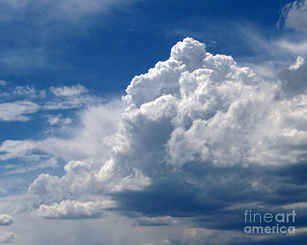 Thunderstorm by Laurie Klein