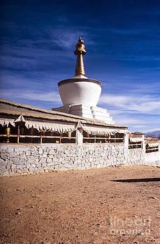 Tim Hester - Tibetan Stupa