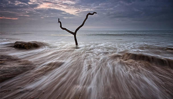 Tidal Rush by Mark Leader