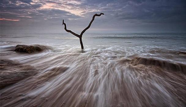 Tidal Rush by Mark Leader