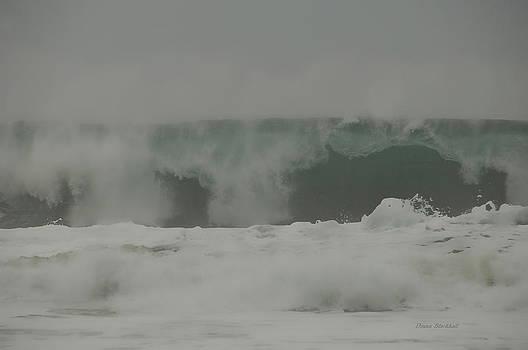 Donna Blackhall - Tidal Wave