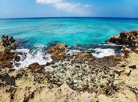 Jo Ann Snover - Tide pool Smith Cove Grand Cayman