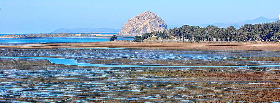 Tidelands of Morro Bay by AJ  Schibig