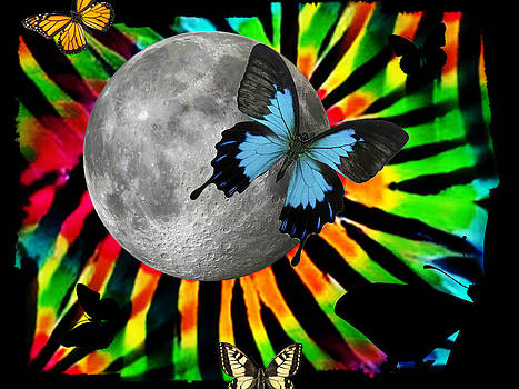 Tie Dyed Butterfly Moon by Jessica Grandall