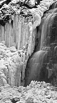 Tiffany Falls - A study in black and white by Alan Norsworthy