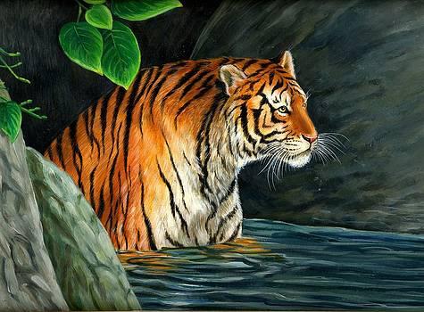 Tiger Bath by Mohd Zishan