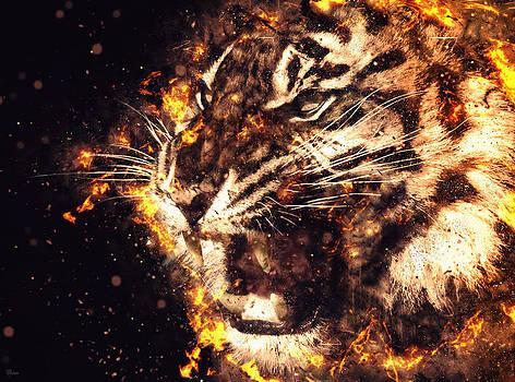 Tiger by Bojan Jevtic