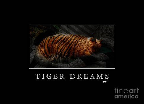 Kathi Shotwell - Tiger Dreams Poster