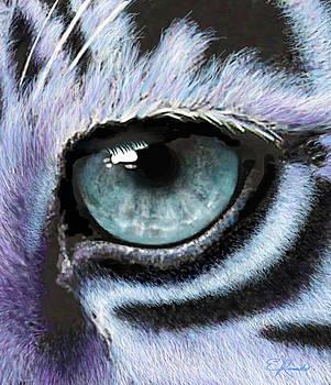 Tiger Eye by Edwin Rosado