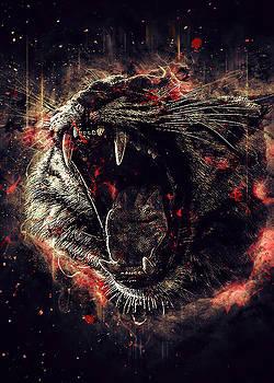 Tiger fury by Renato Armignacco