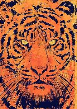 Tiger by Giuseppe Cristiano