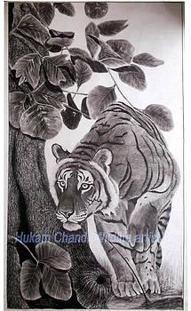 ''tiger Hunting'' by Hukam Chand Wildlife artist