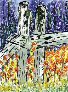 Lesley Fletcher - Tiger Lilies