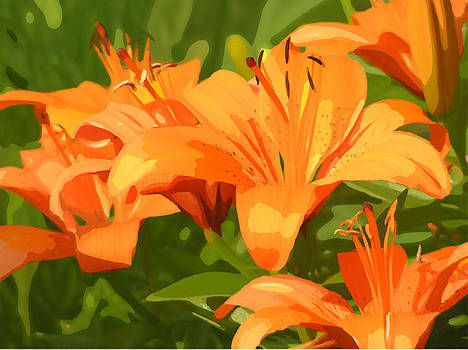 Tiger Lily Garden by Marisa Horn