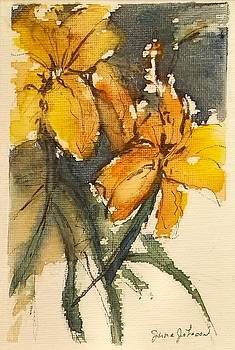 Tiger Lily by Jane Johnson