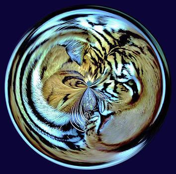 Paulette Thomas - Tiger Orb