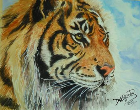 Tiger Portrait by Kristina Delossantos