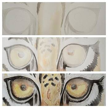 Tiger Progression by Ashley Cox