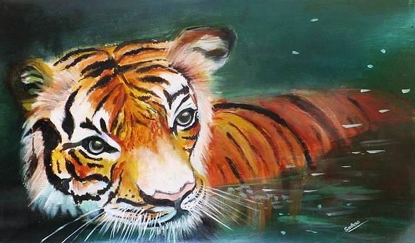 Tiger by Sadhna Tiwari